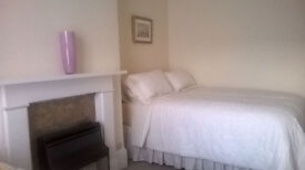 Beautiful single ( female) room near Archway Station - Zone 2 - Archway - UK