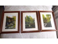 THREE FRAMED WATERCOLOUR ART PRINTS BY TINA HOLLEY.