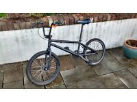 Custom Mongoose Program BMX Bike