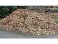 *Wanted* wood chippings