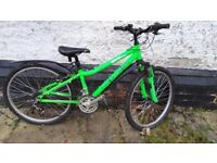 Older kid's Green Rideback bike.
