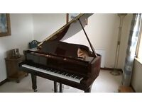 Yamaha C1 Grand Piano for sale in excellent condition