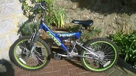 Raven Inquest mountain bike suitable for age approx 5-10
