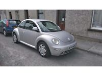 Very clean looked after beetle