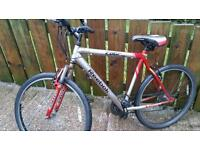 REEBOK EDGE mountain bike for sale ...