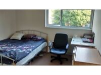 Spacious double room to let!
