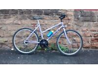 COVENTRY EAGLE VISION MTB