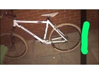 Oranage Gringo mountain bike front disc brake