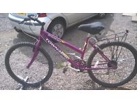 LADIES ADULT MOUNTAIN BIKE 26 IN ALLY WHEELS 18 INCH FRAME