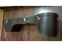 Sitar Indian musical instrument