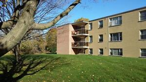Large & Affordable 2 Bedroom, 2 Bathroom Apartments London Ontario image 8