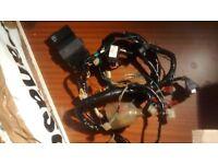 HONDA CBR600 FX FY CBR 600 1999 - 2000 F4 WIRING LOOM