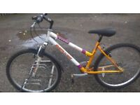 LADIES MOUNTAIN BIKE 16 INCH FRAME 26 IN ALLOY WHEELS 18 SPEED GEARING