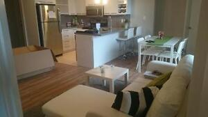 Brand New 2 bedroom condo close to Whyte Ave and U of A Edmonton Edmonton Area image 1