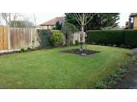 Gardening and rubbish clearance and fencing