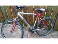 Gents REEBOK EDGE mountain bike for sale