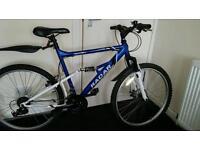 Blue apollo radar mountain bike