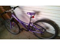 "Kids mountain bike 15"" Trek, purple, in good condition."