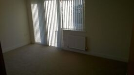Immediately Available - 2 Bedroom Groud Floor Apartment in Devonport to Rent