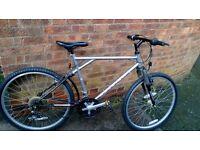 """men's raleigh activator bike 26"""" wheels"""