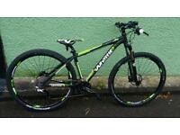 Whistle patwin mountain bike