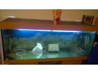 5ft 450l Fish tank with 2 fish,2 pumps and heater.