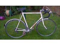 Fast and Lightweight Ammaco Racing/Road bike For tall people 5ft8+