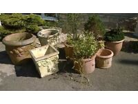 Large Selection of Pots and Planters at bargain prices
