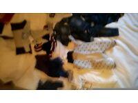 lots brandnew boys newborn clothes