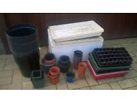 Over 100 + Selection of various sized garden pots and bedding trays Include Fruit food plant feed