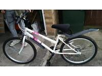 Dunlop Diamond Girls / Ladies Bike