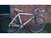 men's raleigh equipe racer bike 700 wheels
