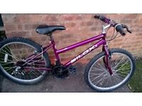 """concept bilox bike 24"""" wheels"""