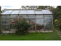 Alton Cedar greenhouse 15ft 6ins x 10ft 6ins Safety glass with complete staging £4,270 when new