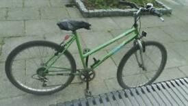 Adult Bike. All working order