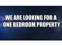 Trustworthy professional couple looking for a one bedroom property