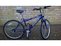 Emmelle boys' mountain bike
