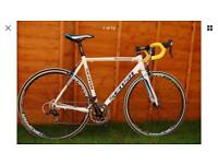 Sesna road bike excellent condition