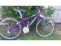 GT purple mountain bike