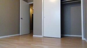 Newly renovated 2BD for just $1050 plus free internet!!! SD $350