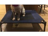 Dog bed blue