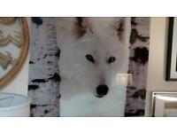 Beautiful Designer Large White Wolf Glass Wall art