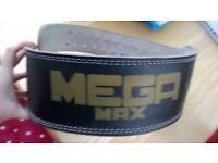 Gym Belt