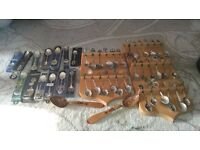 41 collectable spoons and 2 display stands