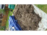 Free soil approx 1 tonne