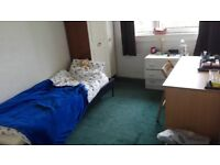 A nice single bedroom available from June!