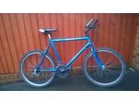 Apollo Energy...Mans Mountain Bike....Good Value £49.00....For the Taller Man or Youth..Great Choice