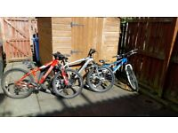 2 Specialized Mountain bicycles and 1 x Radar mountain bicycle. - For sale !