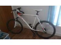 raleigh all terrain 10 mountain bike.