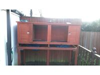 Rabbit/ginuea pig hutch and stand